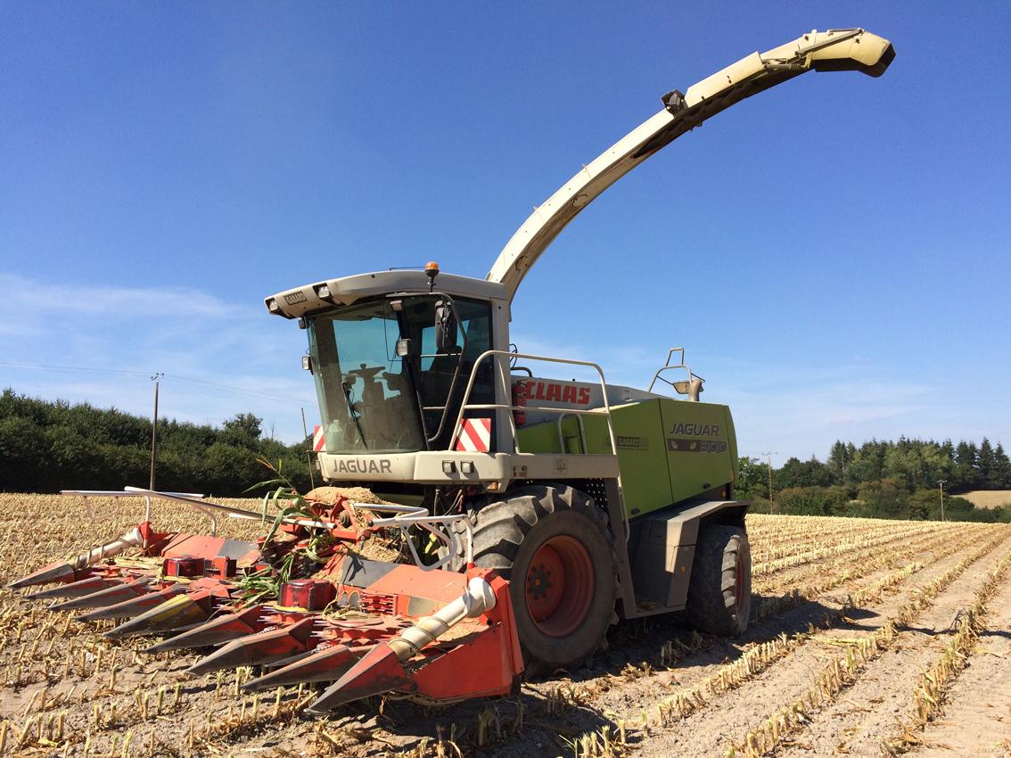 Ensileuse claas 900 gabard 79 travaux agricoles cholet bressuire maul on - Meteo cholet 49 ...