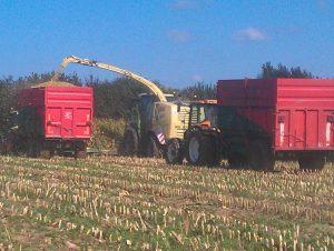Travaux agricoles ensileuse