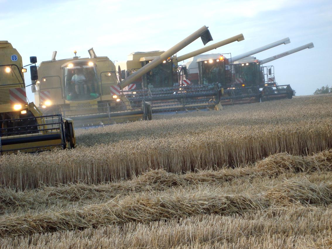 Travaux agricoles moissonneuse